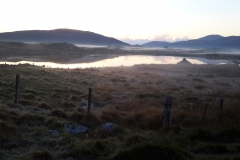 Early morning mist in Bayhead
