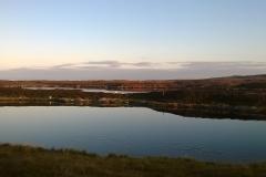 Swans on Loch Ollay