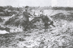 Stuck in the Mud, WW1 trenches